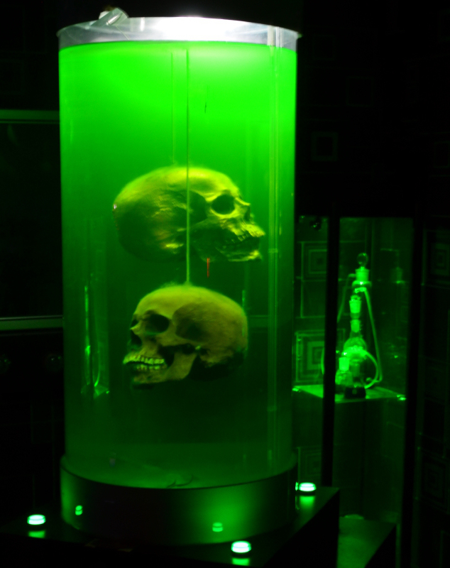 A dark room containing a large tank of green liquid. Two human skulls are suspended in the tank.