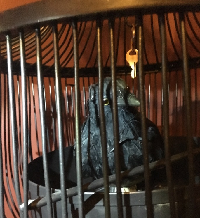 In game: A close up of a raven in a bird cage with a key dangling above its head.
